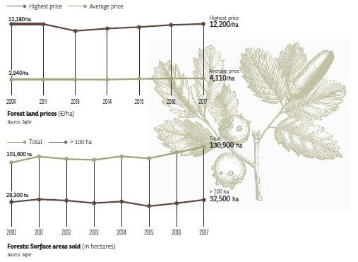 Forests: Surface areas sold in hectares) I Agrifrance I BNP Paribas Wealth Management