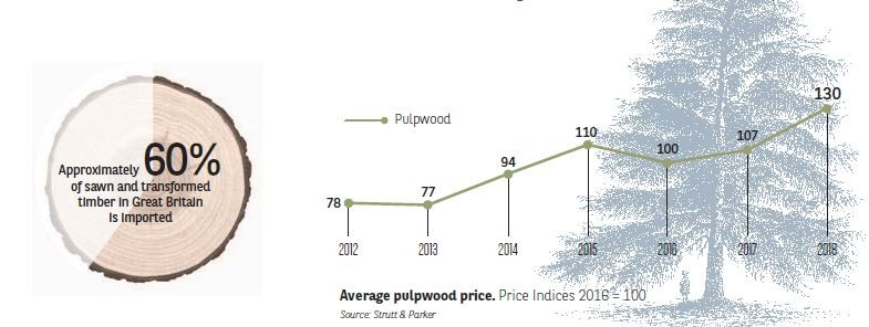 Average pulpwood price. Price Indices 2016 = 100 I Agrifrance I BNP Paribas Wealth Management