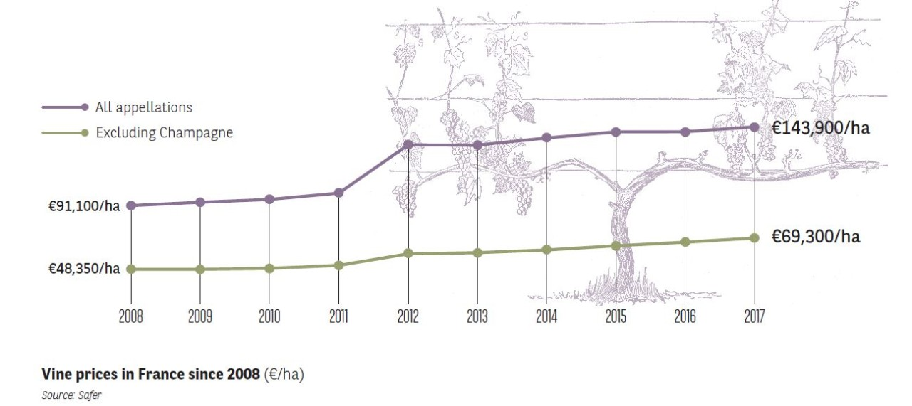 Vine prices in France since 2008 - Agrifrance I BNP Paribas Wealth Management