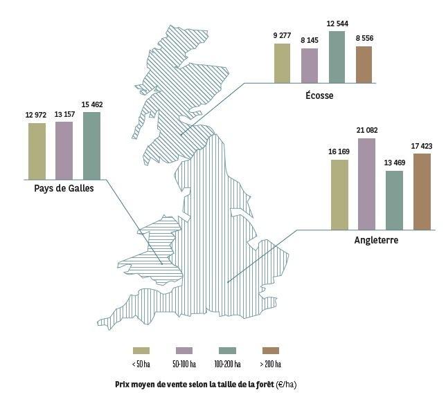 Prix moyen de vente selon la taille de la forêt I Agrifrance I BNP Paribas Wealth Management