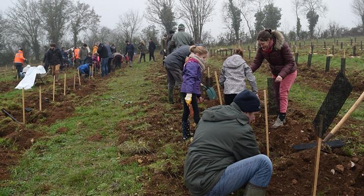 Fonds Archimbaud pour l'Homme et la Forêt
