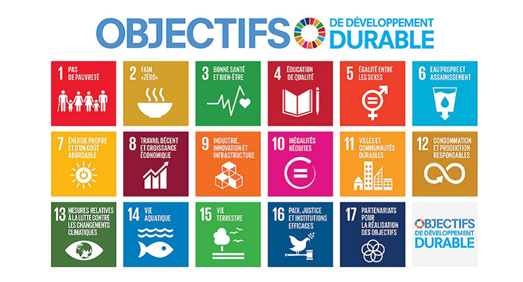 I want to focus on themes whose economic activity is linked to the UN SDGs