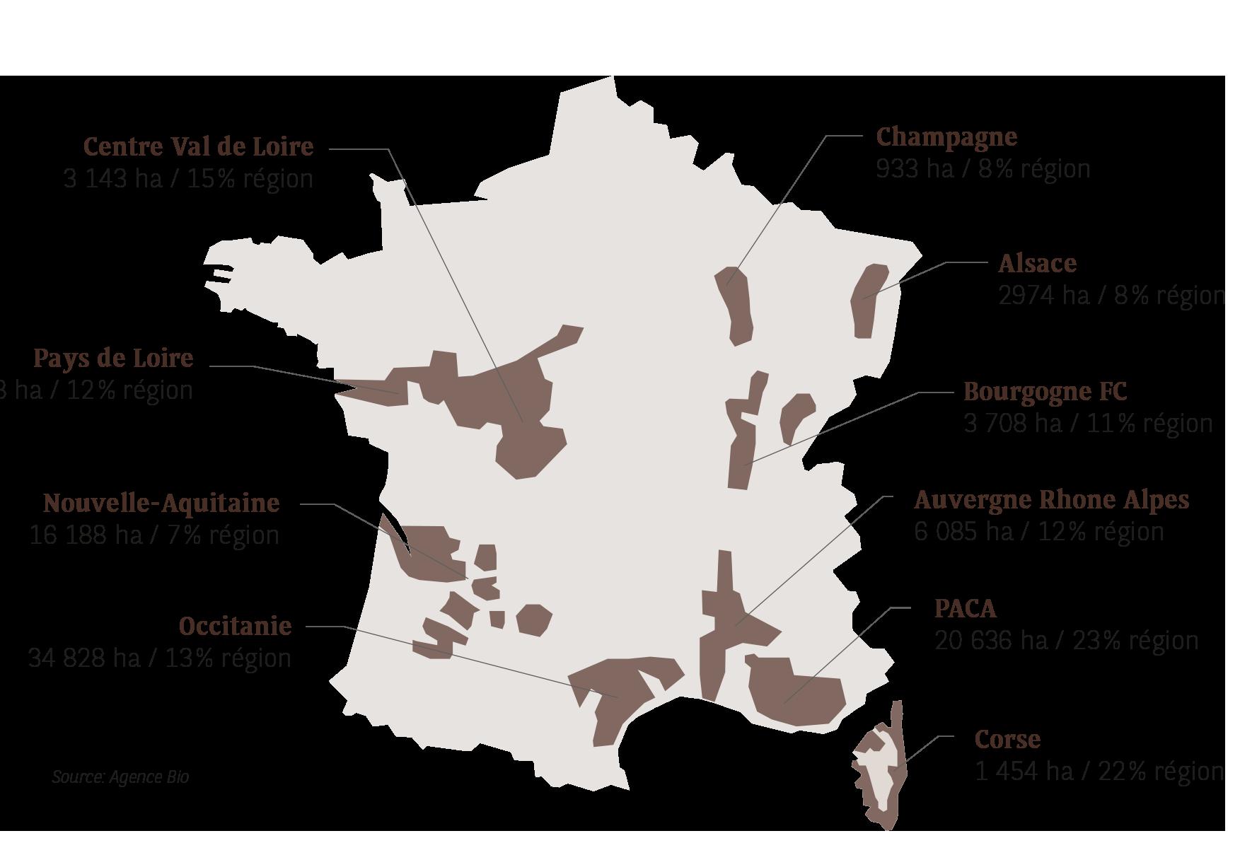 Répartition des vins bios en France - Etude Agrifrance 2020 I BNP Paribas Wealth Management
