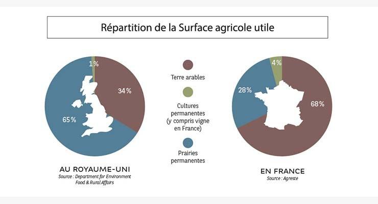Répartition de la surface agricole utile - Etude Agrifrance 2019 I BNP Paribas Wealth Management